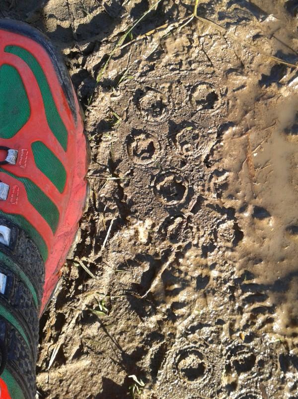 Deep wet mud grip