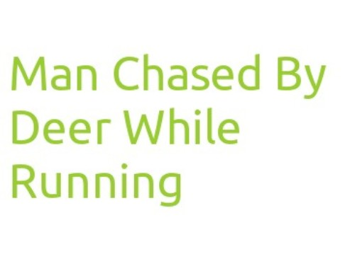 Man Chased By Rutting Deer While Running